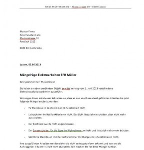 hfpv thesis vorlage
