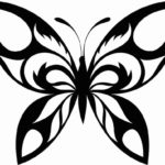 Schmetterling Vorlage 5